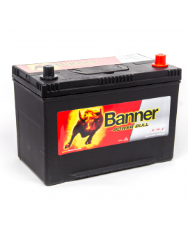 BATTERIE BANNER POWER BULL...
